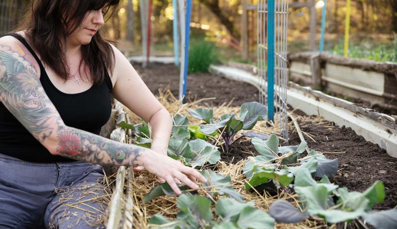 The First-Time Gardener mulch garden