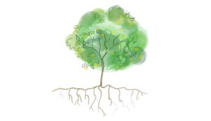 planting a tree trees