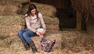 Alexa Lehr Svart Hona chicken chickens