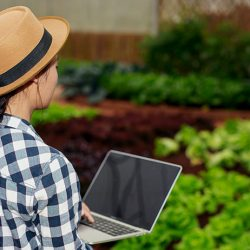 cash flow budget farm finances