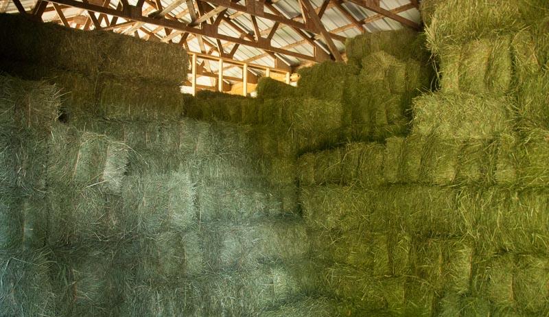 stack square hay bales
