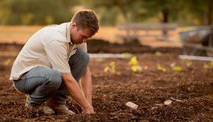 regenerative agriculture farm farming certification